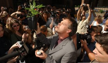 Please Stop Arresting Weed Activists, For Canada's Sake
