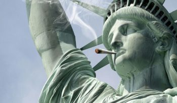 NY: Cannabis products sales projected to upsurge in both medical and recreational segments