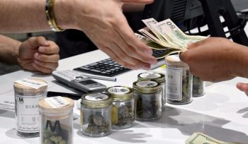 Florida Destroys a Weed Banking Plan