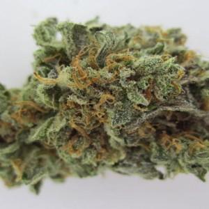 Orange Velvet (Hybrid) Strain Weed