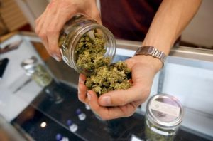 Colorado Marketed over $1.1 Billion Dollars in Weed Last Year