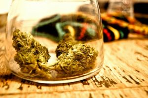DEA Issues Helpful Set of Marijuana Slang