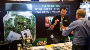 Pot in Casinos? Nevada game playing policy committee to examine position