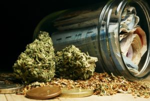 Canada: Where cannabis matches e-commerce