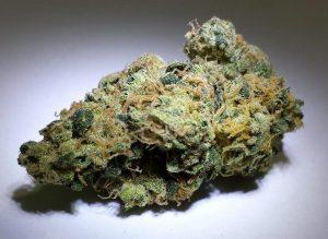 Quality Marijuana